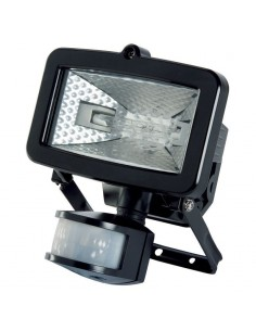 100w Halogen Flood Light...