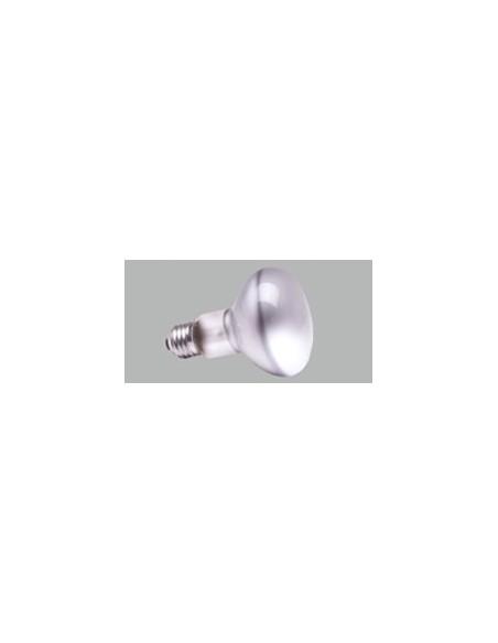 Spot/PAR Bulbs