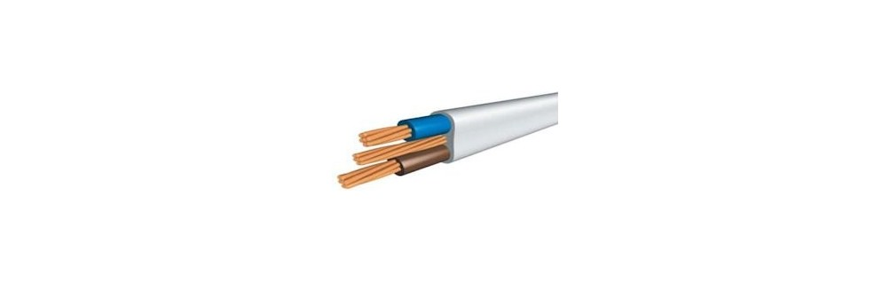 Twin & Earth Cable